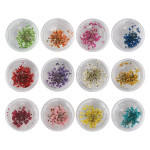 Nail Art Accessories Dried Flowers, Segbeauty 24 Different Colorful Nail Stickers For DIY Crafts Nails Decorations